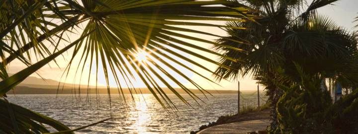 New horizon Baja California
