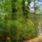 Summer rain abstract