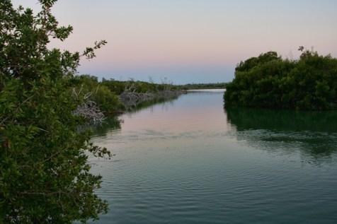 water-nature-preserve-park-merida-WP