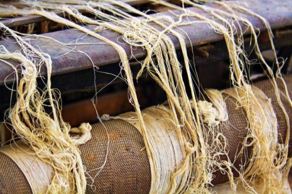 thread-Centre-for-the-Arts-CASA-SanAugustin-Etla-Oaxaca-Mexico-2
