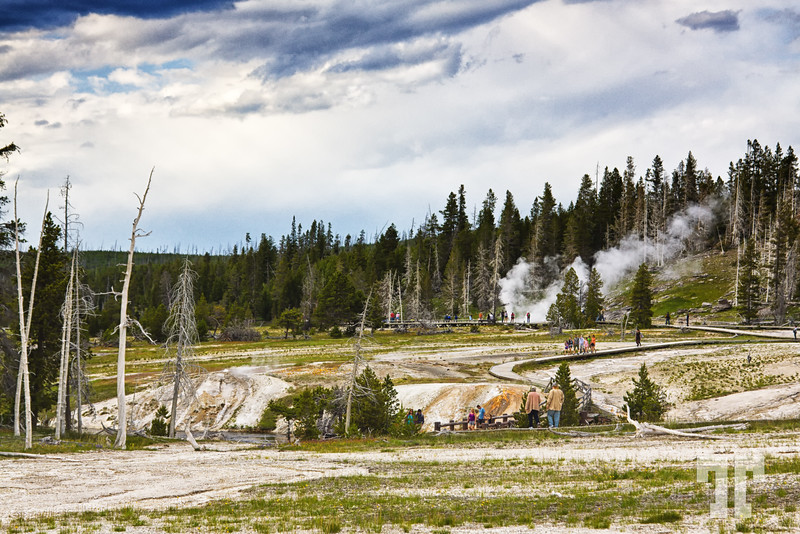 People watching the geysers and hot springs at Yellowstone National Park