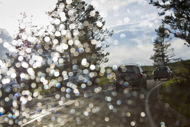 Summer rain in Yellowstone National Park