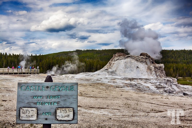 Castle Geyser prediction for eruption