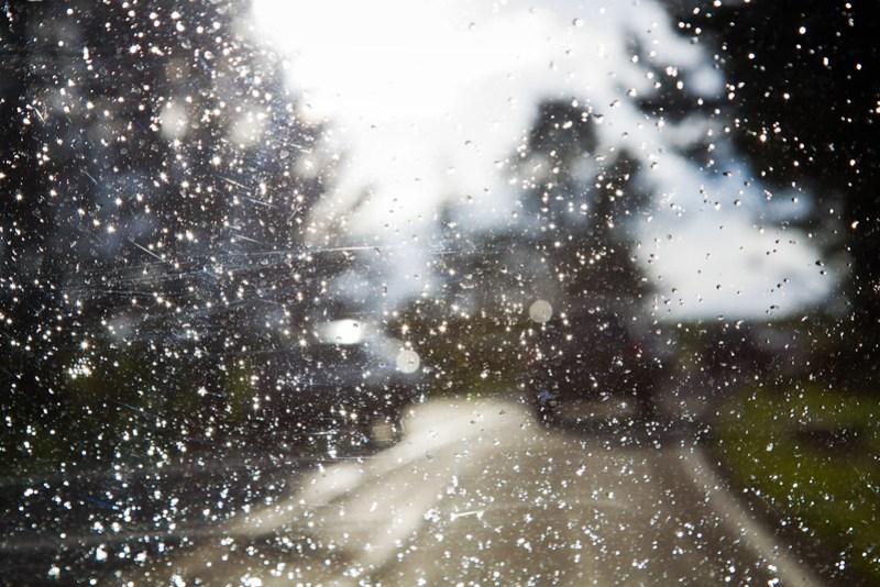 Rain and storm at Yellowstone