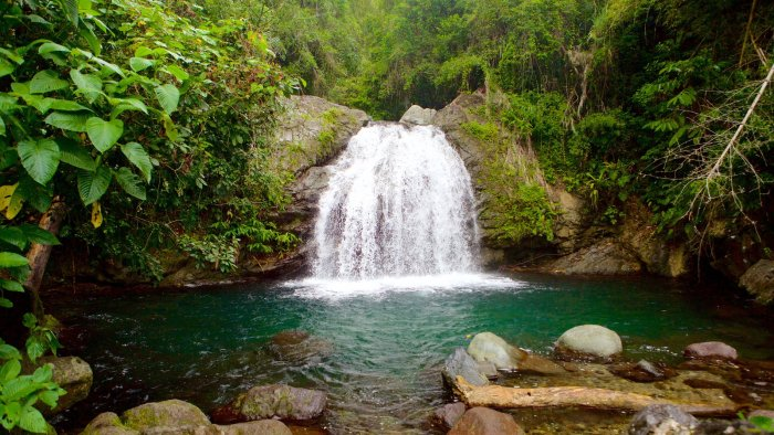 Blue Mountains and John Crow Mountains National Park, Cheap Flights to Jamaica, direct flights to jamaica, last minute flights to jamaica
