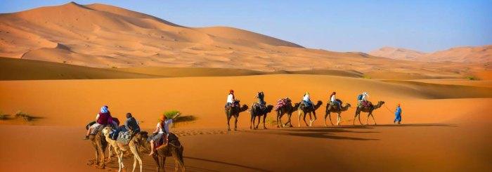 marrakech travel wide flights