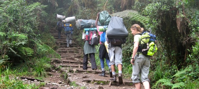 The Mount Kilimanjaro Climbing Trails | Cheap Flights To Kilimanjaro