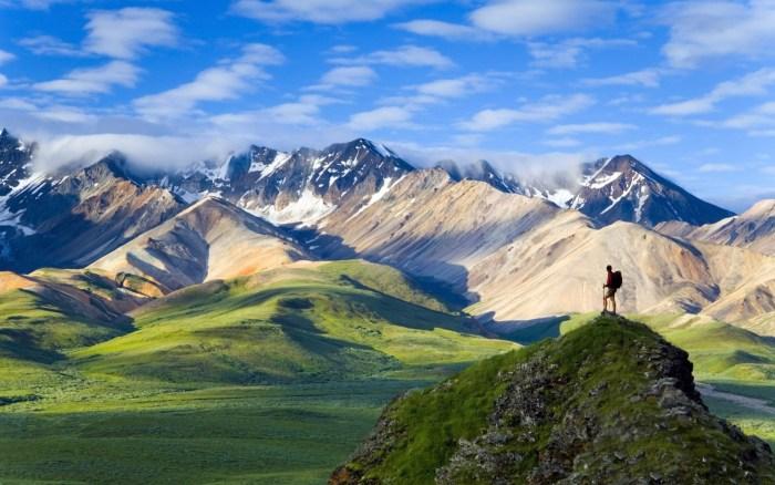 Denali National Park, cheap flights to alaska, direct flights to alaska, alaska tourism, travel to alaska, alaska tourism, things to do in alaska, alaska , alaska travel wide flights