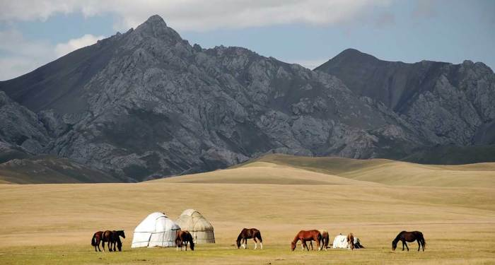 cheap flights to kazakhstan, direct flights to kazakhstan, cheap tickets to kazakhstan, silk road trip, silk road tour