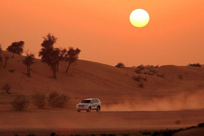 night safari in jeep travel wide flights