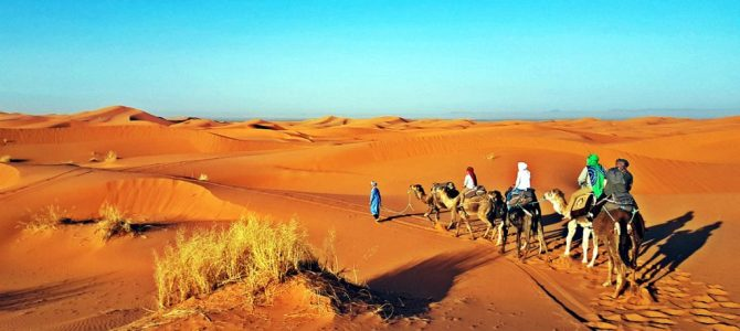 Tourist Attractions In Casablanca And Ouarzazate