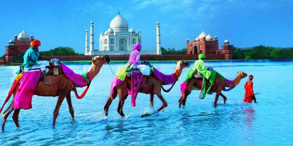 Must Visit Destinations in India | India Travel Guide