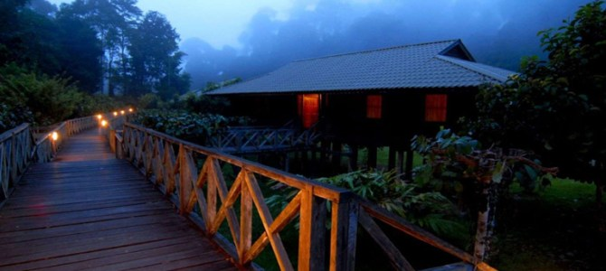 Most popular jungle resorts in