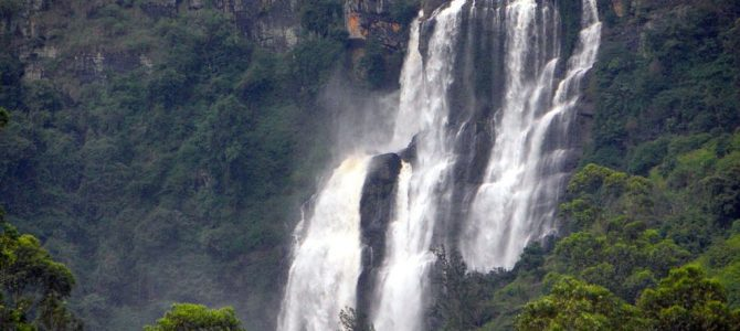 Reasons why Sri Lanka ought to be your next Destination