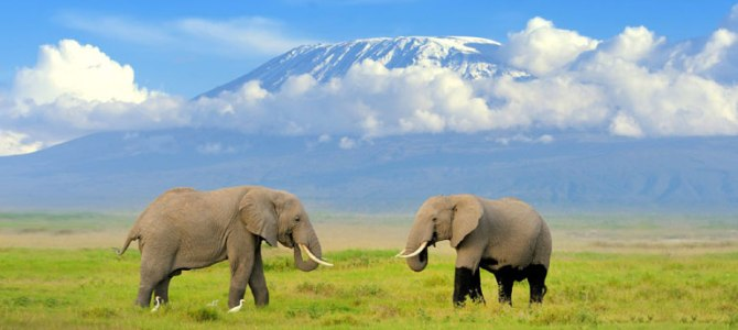 Beautiful Places To Visit In Kenya