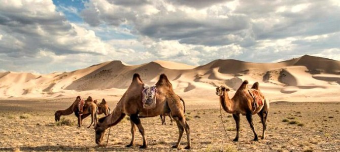 Beautiful Places To Visit In Mongolia