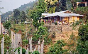 Naku Pelling Resort