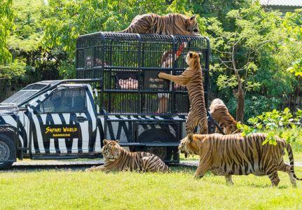 Bangkok_Safari_World.jpg
