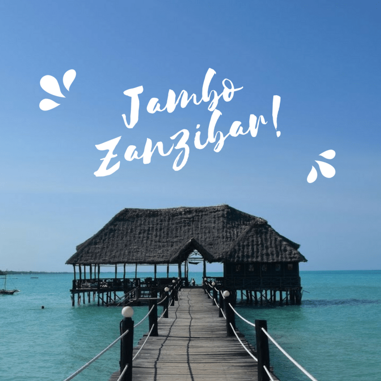 Travel Costs Breakdown: Zanzibar