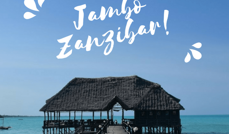 Travel Costs Breakdown: Zanzibar