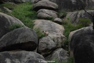 Olumo Rock
