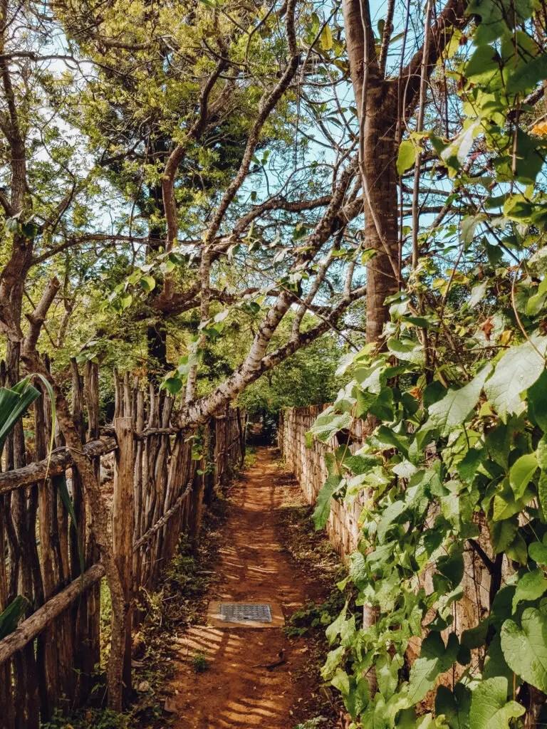 Watamu Beach Path