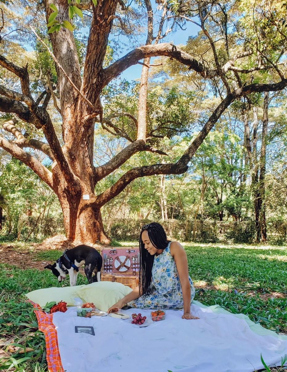Nairobi Arboretum Picnic