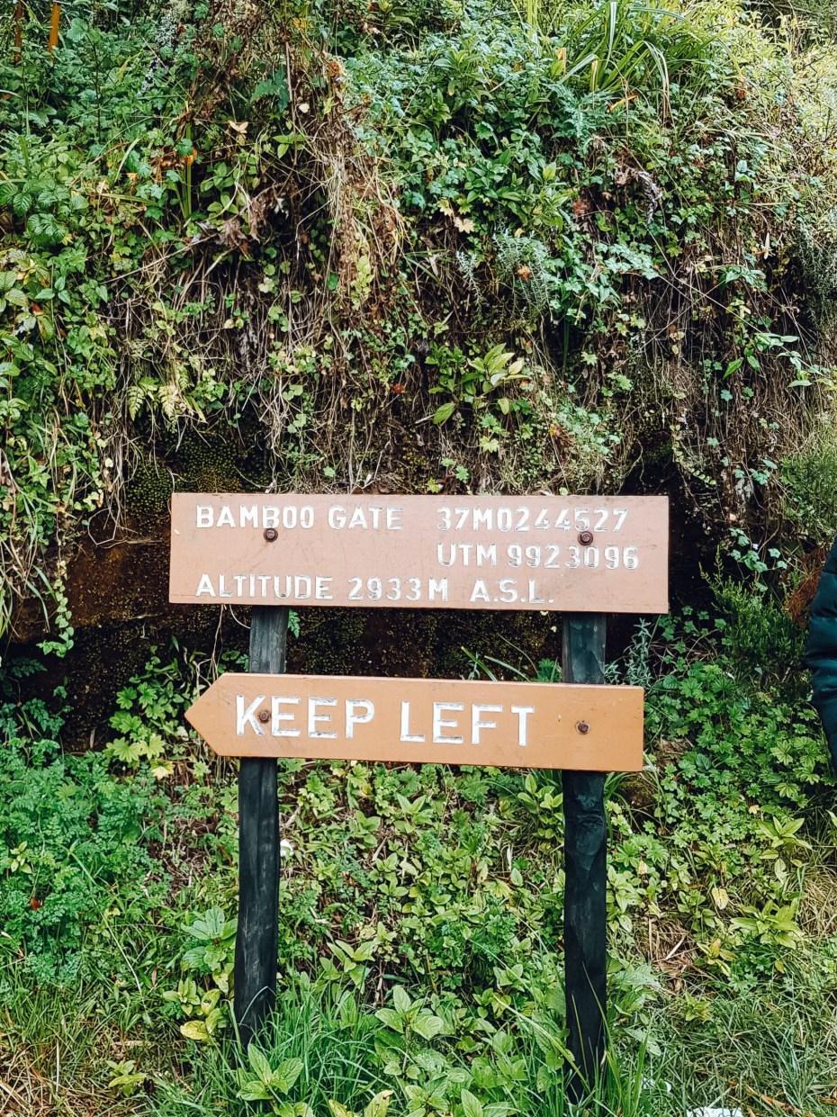 Elephant Hill Bamboo Gate Start Point