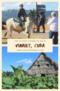 Top 10 things to do in Vinales, Cuba