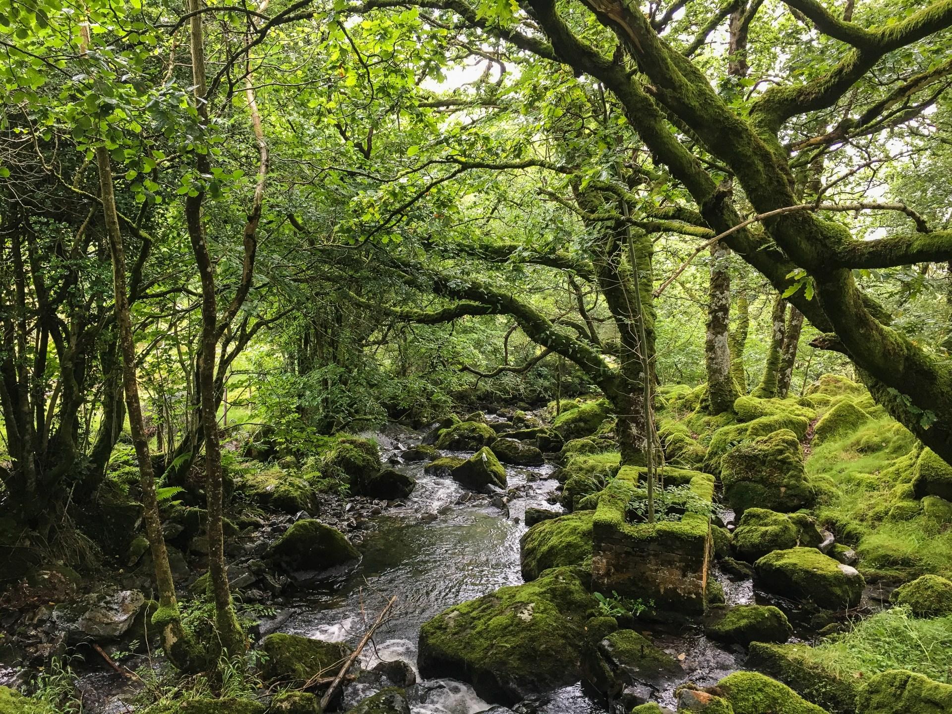 trefriw foto's van Wales