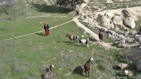 Beitsahur_Palestine_Stanito_2-1-01