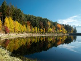 Costalovara riflessi foliage sul lago