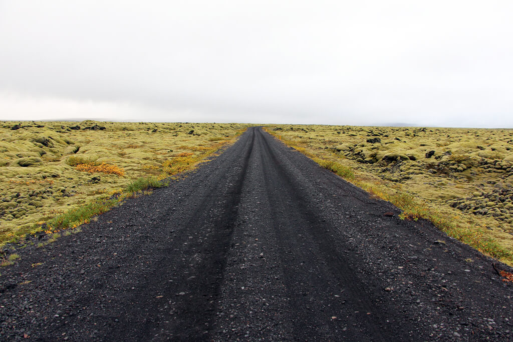 Iceland Black Roads & Green Moss Fields
