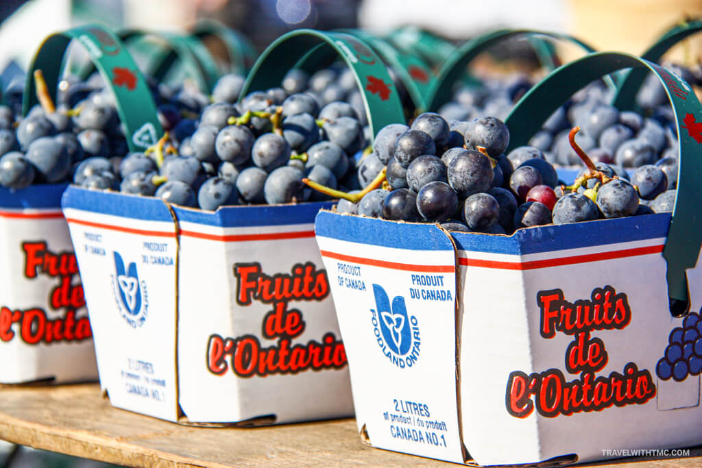 St. Jacobs Market Fresh Ontario Blueberries on a sunny summer day