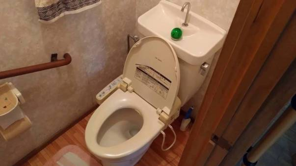 Japan toilet with sink