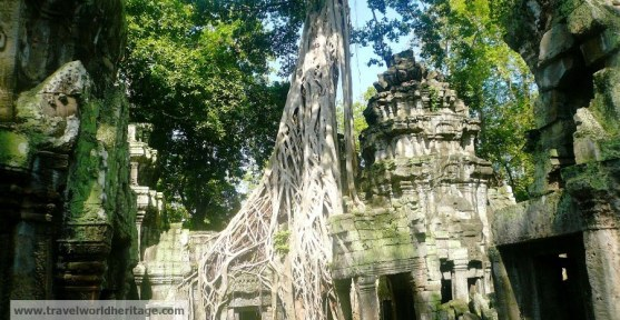 This is Angkor by the way.
