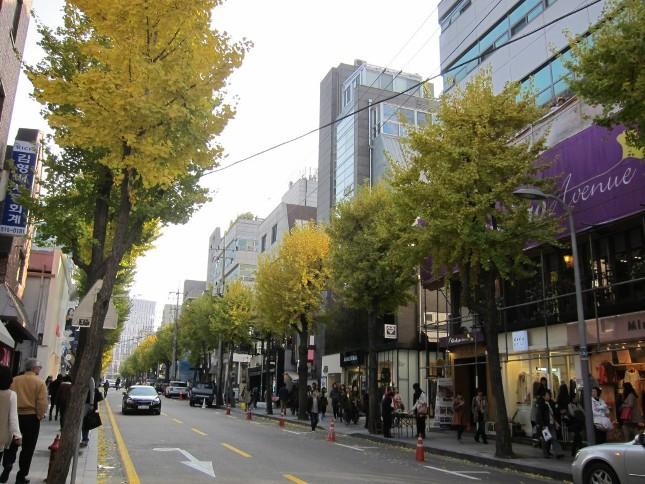 Photo Credit: Parksihoo4u.com