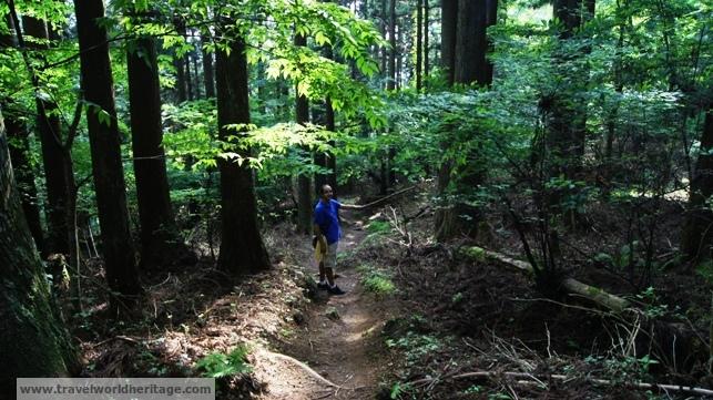 Hiking Koyasan