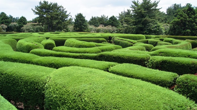 Maze Park