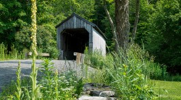 vermont-covered-bridge-ben-root