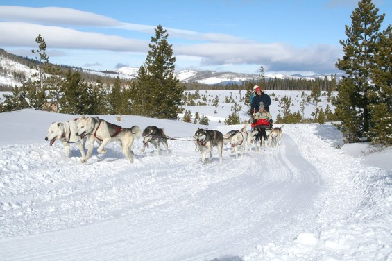 Dog sledding is one of the winter activities on Snow Mountain. Photo by Carrie Dow.