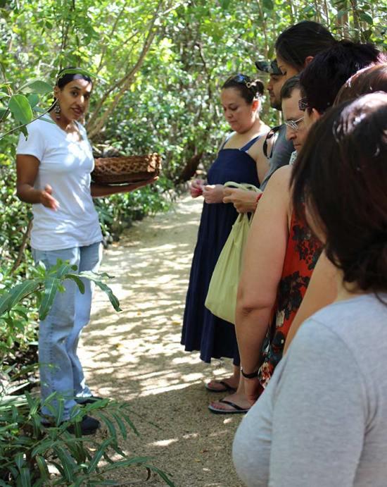 Sense Adventure Experience Tres Rios Mexico