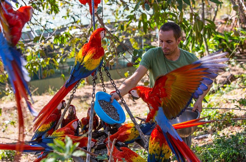 Colorful Costa Rica