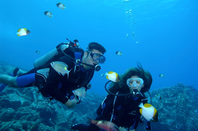 Divers with Butterflyfish