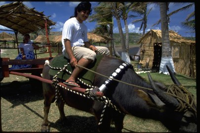 Riding a Carabao