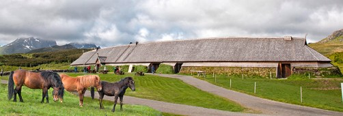 Lofoten Islands: Stocky Norwegian horses outside Viking Longhouse, Viking Museum. Photo credit: Jennifer Crites