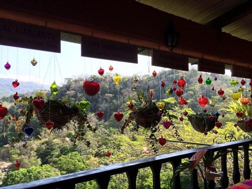 Beautiful vista from the lounge at the Vallarta Botanical Gardens