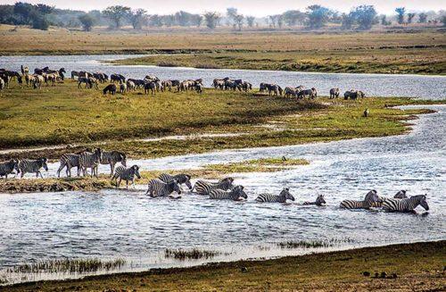 Botswana's Okavango Delta