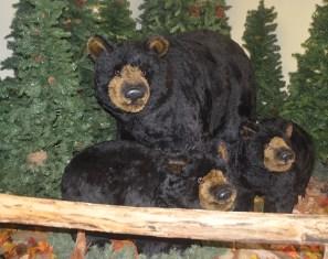 Faux Black Bears at Cherohala Center