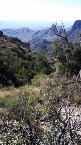 Big Bend National Park- View from Lost Mine Trail